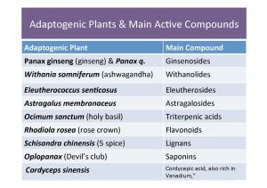 adapation plants